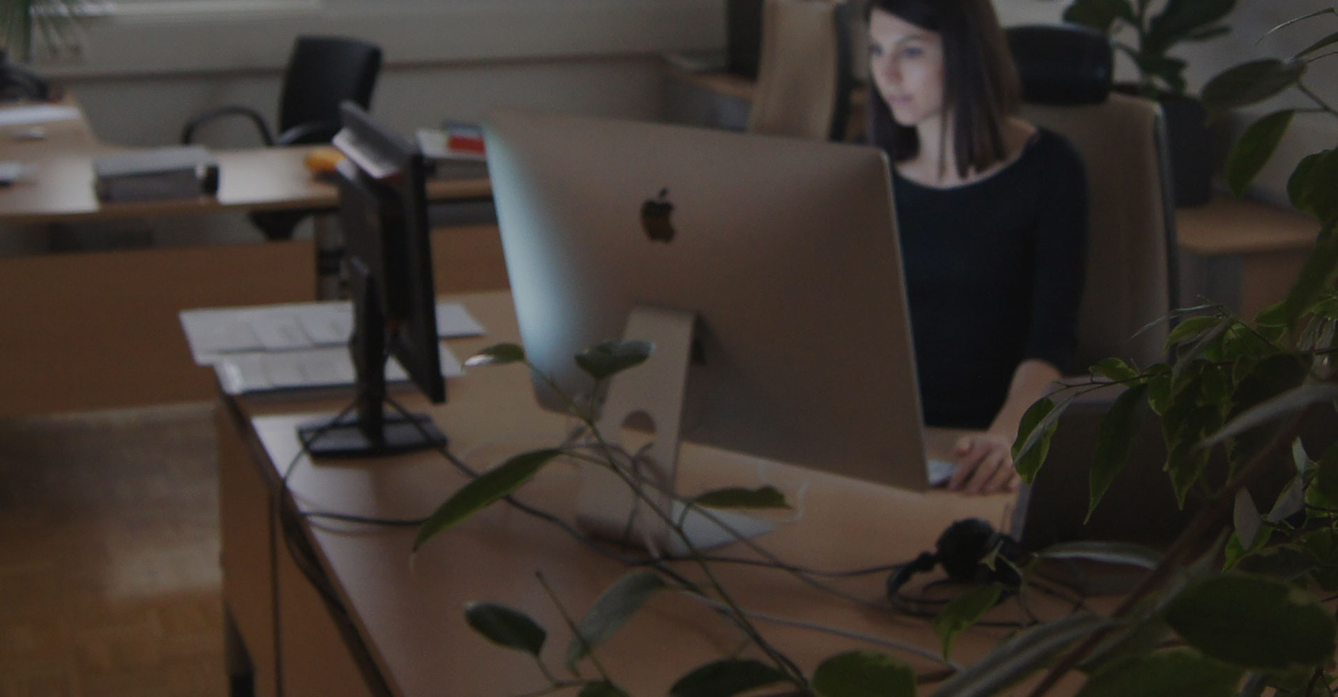 Online Web Agentur Wels