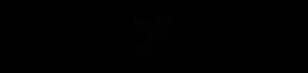 Folaris logo